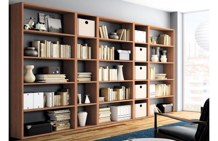 Conjunto de estanterias modernas para oficina o salon